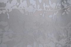 IMG-20170422-WA0014